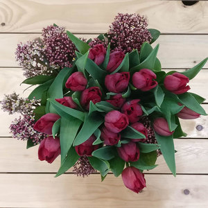 Field of Dreams Tulips | Buy Flowers in Riyadh Jeddah KSA | Gifts