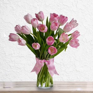Pink Gorgeous Tulips