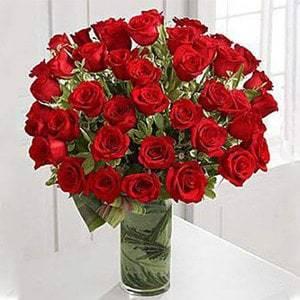50 Premium Long Stem Roses