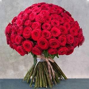 100 Premium American Roses | Buy Flowers in Riyadh Jeddah KSA | Gifts