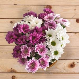 Bloom | Buy Flowers in Riyadh Jeddah KSA | Gifts
