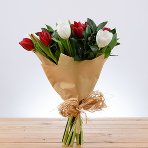 Start Fresh Tulips | Buy Flowers in Riyadh Jeddah KSA | Gifts